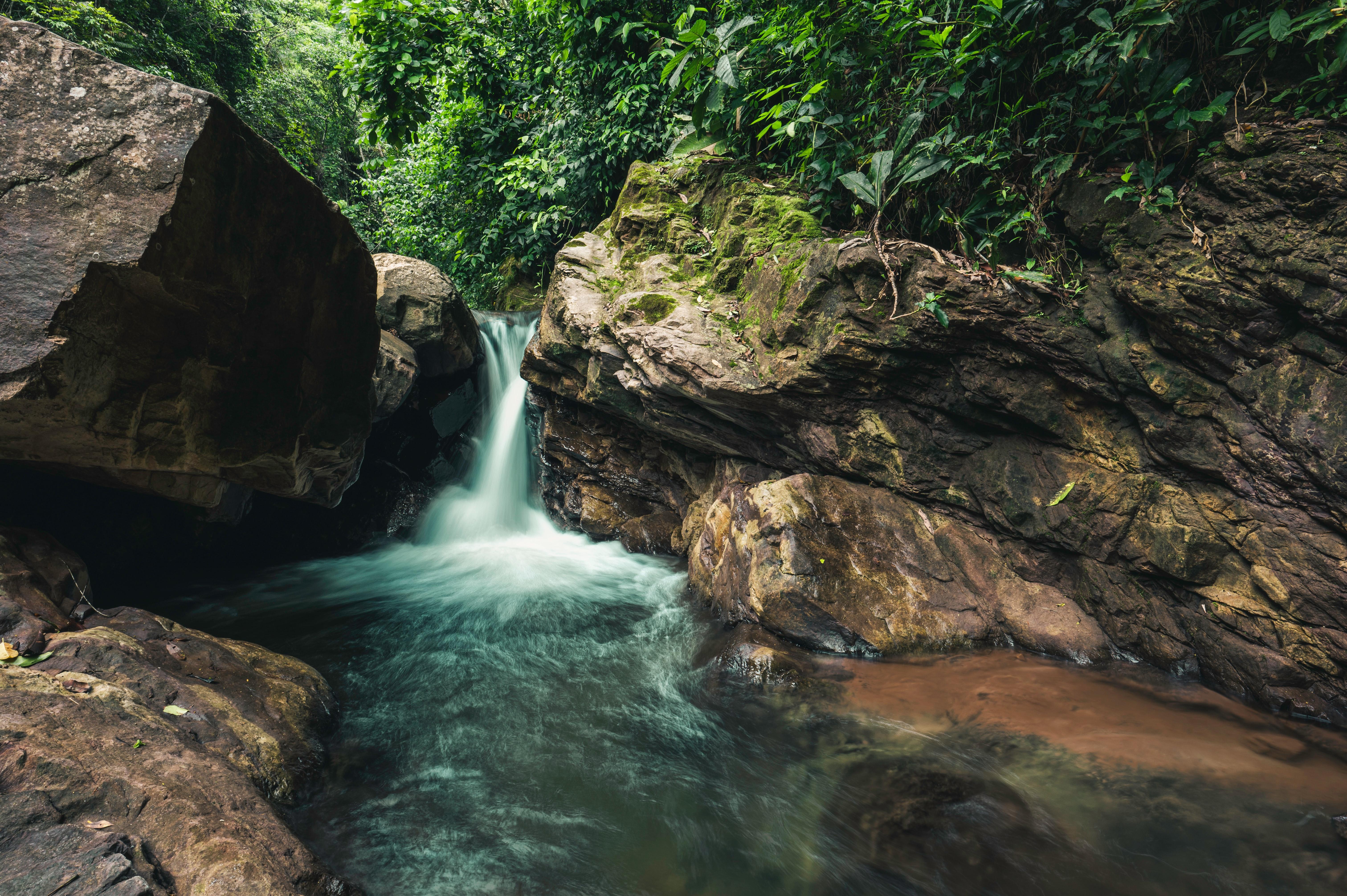 "Review 1: ""COVID-19 herd immunity in the Brazilian Amazon"""